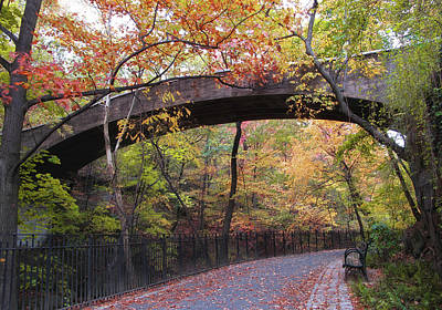 Photograph - Autumn Overpass by Jessica Jenney