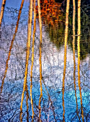 Abstract Photograph - Autumn Patterns 2 by Steve Harrington