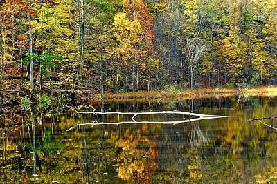 Photograph - Autumn Pond by Frozen in Time Fine Art Photography