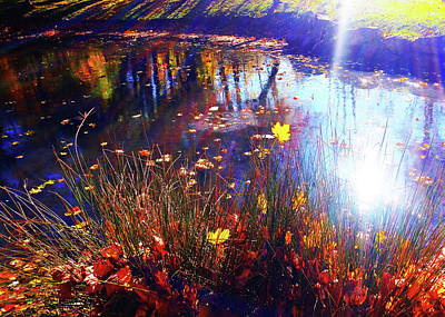Photograph - Autumn Pond Reflection by Roger Bester