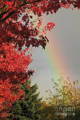 Photograph - Autumn Rainbow by Frank Townsley
