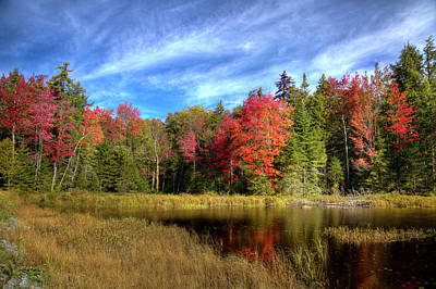 Photograph - Autumn Reflections On Fly Pond by David Patterson