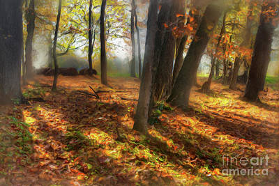 Painting - Autumn Shadows In The Blue Ridge Ap by Dan Carmichael
