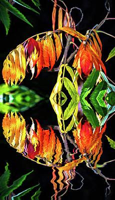 Sumac Tree Photograph - Autumn Song by Steve Harrington