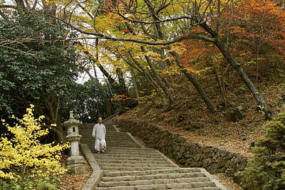 Photograph - Autumn Stairway by Michele Burgess