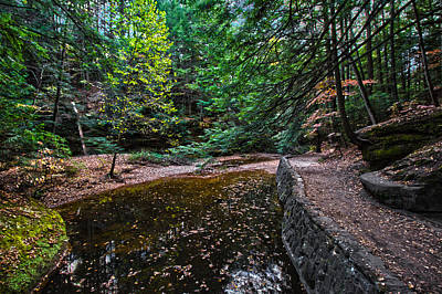 Photograph - Autumn Trail by Daniel Houghton