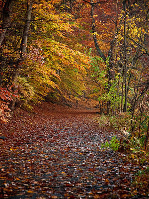 Photograph - Autumn Trail by Jim DeLillo