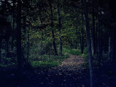 Photograph - Autumn Trail by Scott Hovind