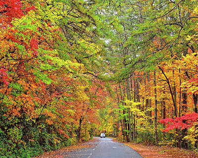 Photograph - Autumn Travel by Susan Leggett