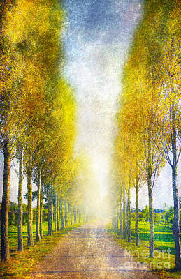 Autumn Trees Art Print by Svetlana Sewell