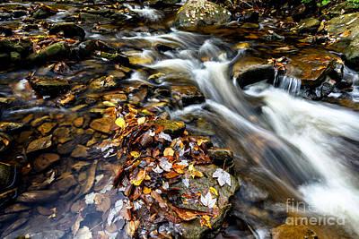 West Fork Photograph - Autumn Upper Shavers Fork Preserve by Thomas R Fletcher