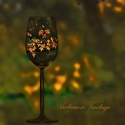 Photograph - Autumn Vintage by Phyllis Meinke