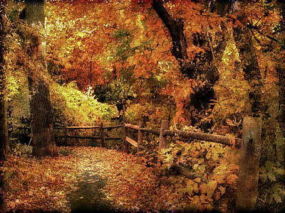 Fall Foliage Digital Art - Autumn Woodland by Jessica Jenney