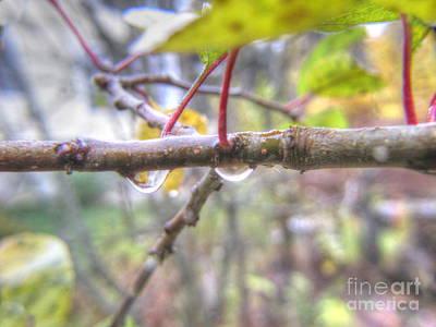 Pyrography - Autumn by Yury Bashkin