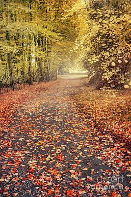 Emo Photograph - Autumnalia by Evelina Kremsdorf