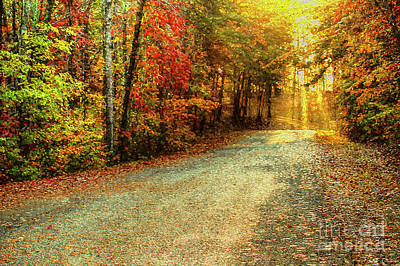 Autumn Scene Photograph - Autumns Path by Darren Fisher