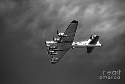 Art Print featuring the photograph B-17 Bomber - Infrared by Thanh Tran