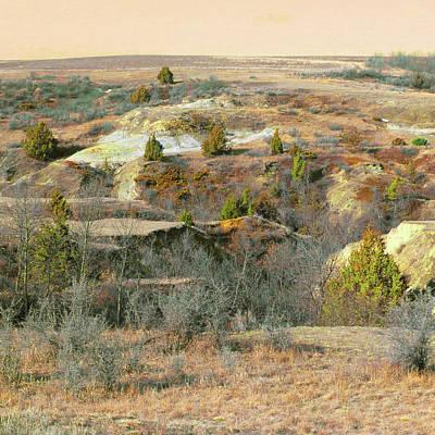 Photograph - Badlands Prairie Reverie by Cris Fulton