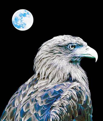 Eagle Painting - Bald Eagle  by Celestial Images