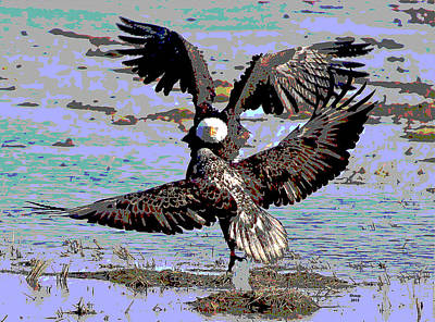 North American Wildlife Mixed Media - Bald Eagle by Charles Shoup