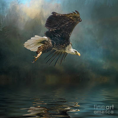 Photograph - Bald Eagle Swooping by Brian Tarr