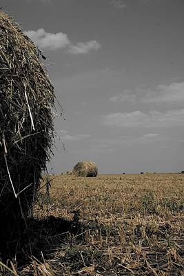 Illinois Farm Land Photograph - Bale by Dylan Punke