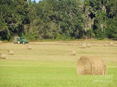 Photograph - Baling Day by Tim Townsend