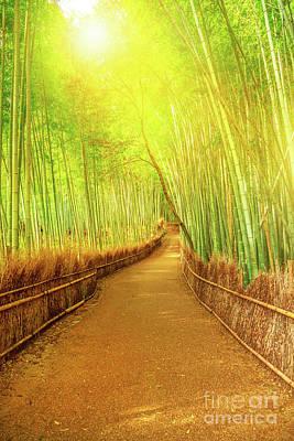 Photograph - Bamboo Grove Arashiyama by Benny Marty