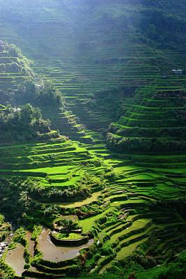 Photograph - Banaue Rice Terraces by Roy Cruz
