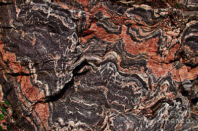 Photograph - Banded Gneiss Rock by Les Palenik