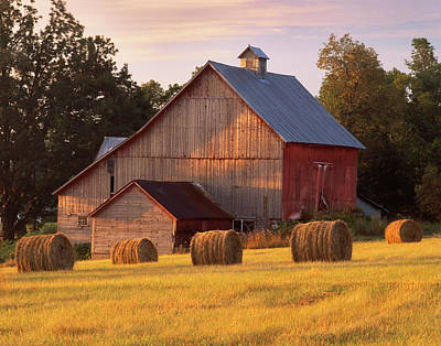 Photograph - Barn. North Hero, Vermont by George Robinson