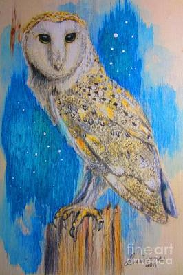 Drawing - Barn Owl by Laurianna Taylor