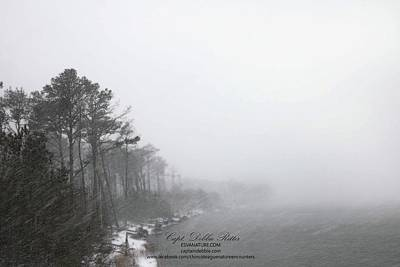 Photograph - Barrier Island Under Snow 2 by Captain Debbie Ritter