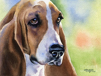 Basset Hound Art Print by David Rogers