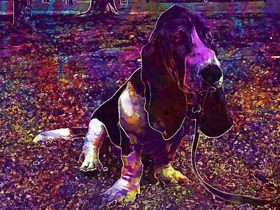 Basset Hound Dog Pet  Art Print