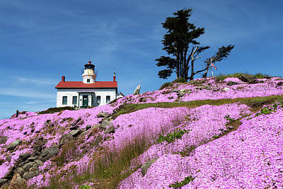 Battery Point Lighthouse Art Print by Rick Pisio