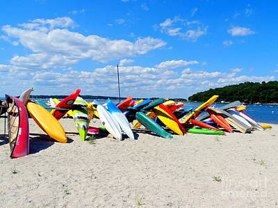 Photograph - Beach Beauty by Ed Weidman