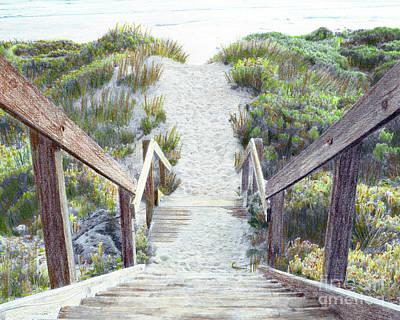 Beach Grass  Art Print by J Marielle