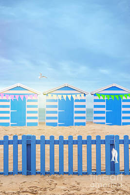 Flying Seagull Photograph - Beach Huts by Amanda Elwell