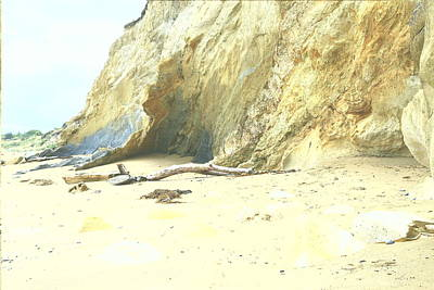 Photograph - Beach With Golden Clay Cliffs by Nareeta Martin