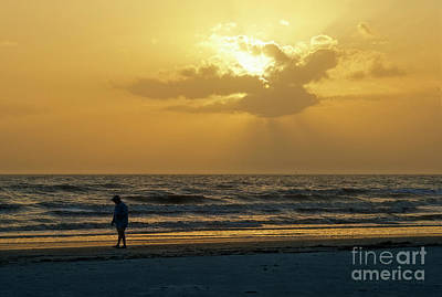 Photograph - Beachcomber by David Arment