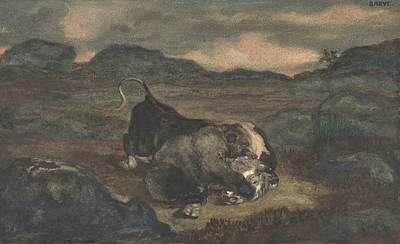 Drawing - Bear Killing Bull by Antoine-Louis Barye