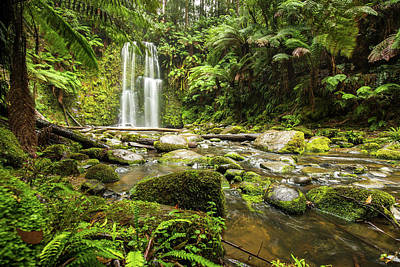 Photograph - Beauchamp Falls by Max Neivandt