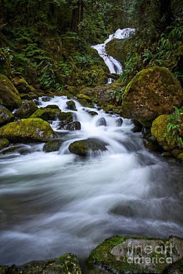 Beautiful Bunch Creek Falls In The Olympic National Park Of Wash Art Print