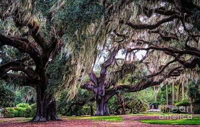 Photograph - Beautiful Gardens by Paulette Thomas