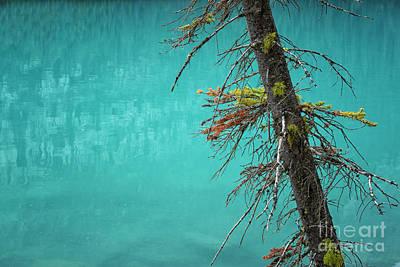 Photograph - Beautiful Lake Moraine by Patricia Hofmeester