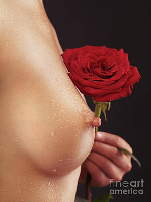 Beautiful Woman Breast And A Red Rose Art Print