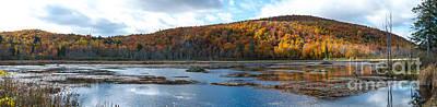 Gatineau Photograph - Beaver Pond, Gatineau Park by Robert McAlpine