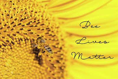 Photograph - Bee Lives Matter by Deb Buchanan