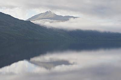 Photograph - Ben Lomond by Stephen Taylor